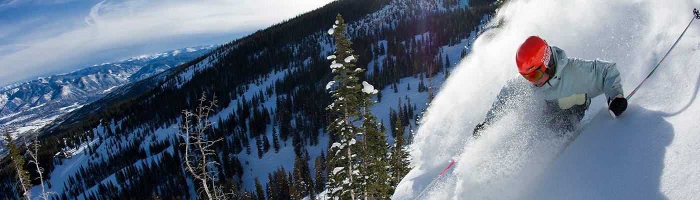 Colorado Business Listings Steeps_3.5-1
