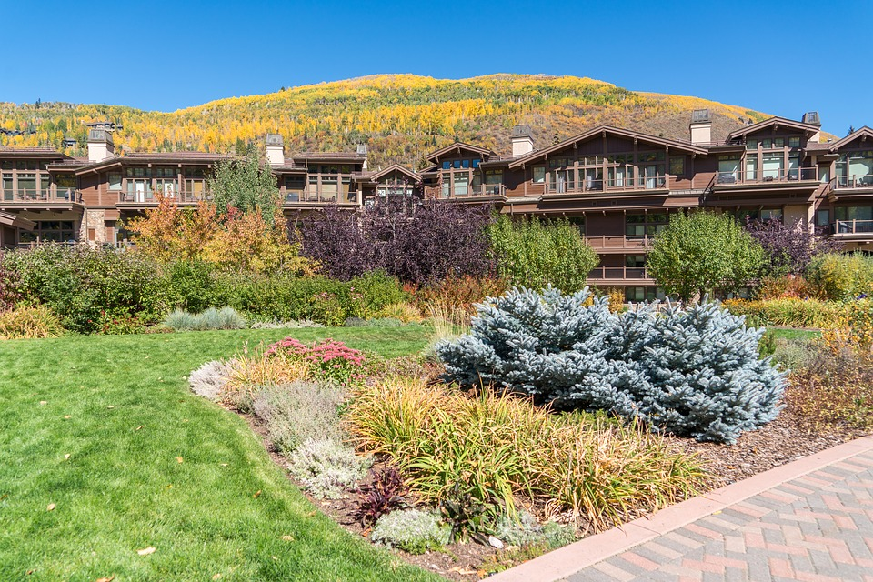 Vail Property Services Biz for Sale